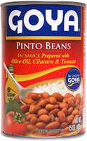 Pinto Beans in Sauce