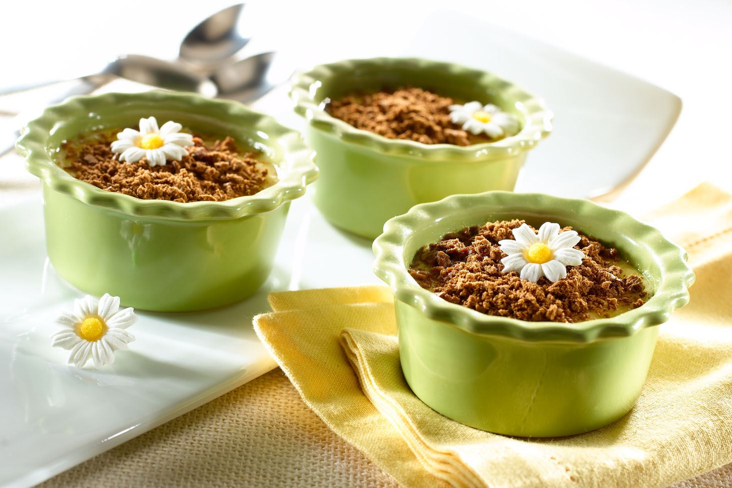 Creamy Coconut Custard with Chocolate Crumbles